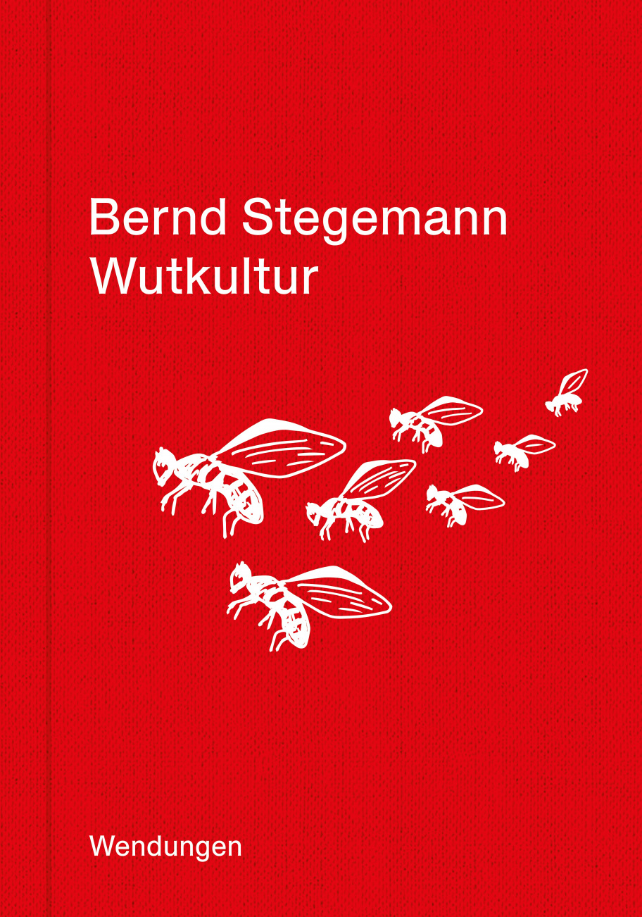Bernd Stegemann: Wutkultur